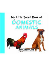 My Little Board Book of Domestic Animals