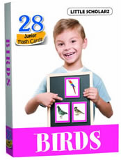 Flash Cards - BIRDS