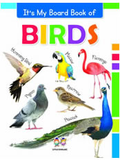 It's My Big Board Book of BIRDS