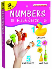 Big Flash Cards Numbers